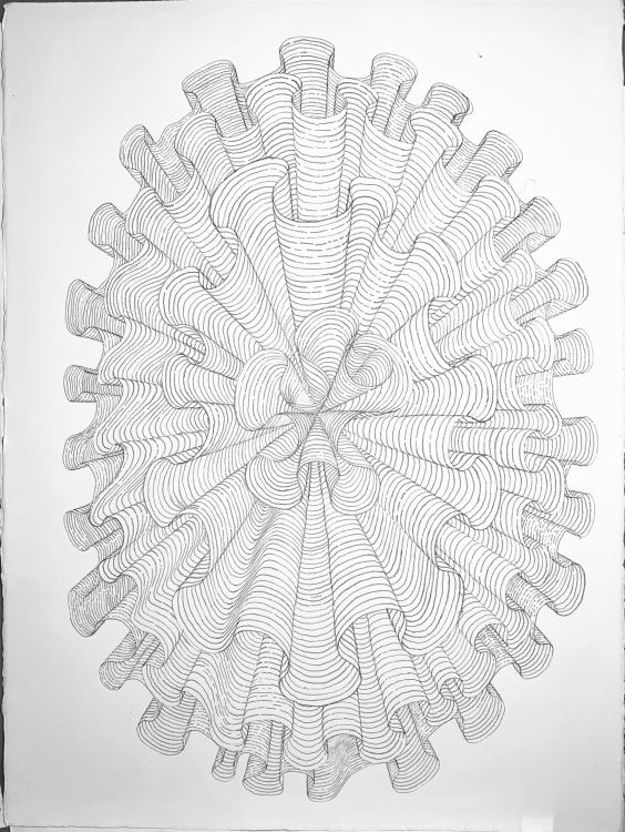 Hyperbolic Plane Drawing: Untitled - Painting by Philip Ayers