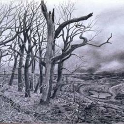 The Burning Season - Painting thumbnail by Philip Ayers