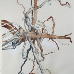 Untitled Root Study - Painting thumbnail by Philip Ayers